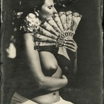 Wetplate ambrotype on clear glass; 13x18cmcm